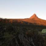 Un'offerta da non rifiutare – Viaggio in Tasmania, atto III – G.Bindi