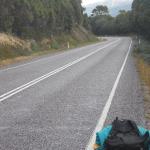 Purea di mele – Viaggio in Tasmania, atto X – G.Bindi