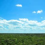 Sali in cima a una montagna – Viaggio in Messico, Atto VIII – B.Bendinelli