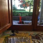Dipartimento di Architettura - Via della Mattonaia, 14, 50121 Firenze