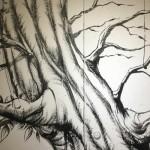 Storie di alberi in galleria: Tree-Roots and Crown    Intervista a Zeus OczB e M. Bidini    Arte e Letteratura    THREEvial Pursuit