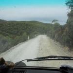 Il cuore della foresta – Viaggio in Tasmania, atto IV – G.Bindi