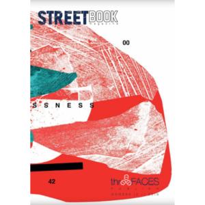 Copertina a opera di Giulio Vesprini di SteetBook Magazine #10_fronte